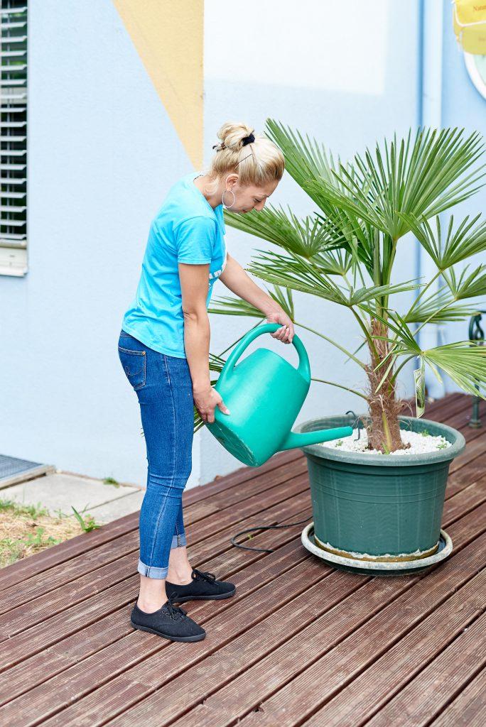 Mitarbeiterin von LD-Hausbetreuung beim Blumen gießen